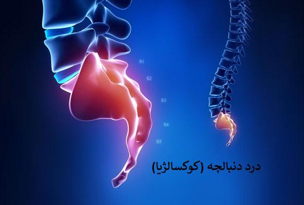 اختلالات عضلات کف لگن  اختلالات عضلات کف لگن چیست؟ - 980717 5 - اختلالات عضلات کف لگن چیست؟